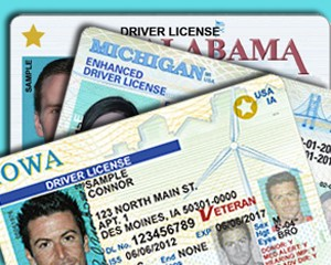 enhanced drivers license cost washington state