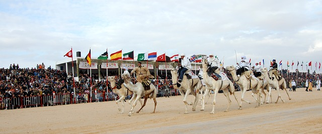 Experience the camel racing festival in Tunisia, no visa required.